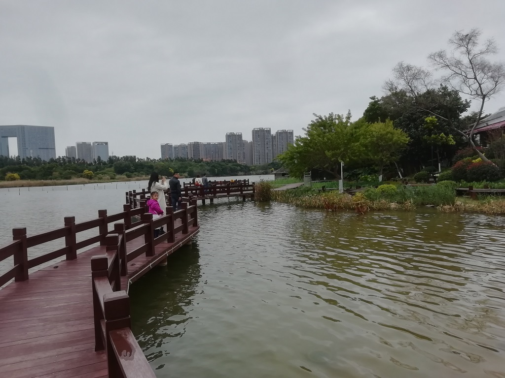 Wuyuan Bay Wetland Park 五缘湾休闲旅游区