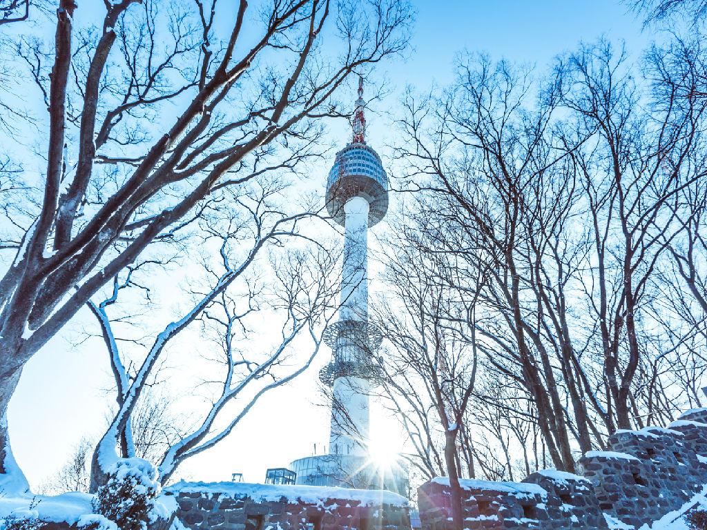 N Seoul Tower (N 首尔塔)