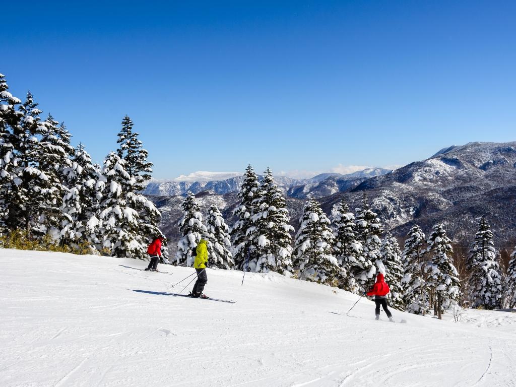 Ski Activities / 滑雪