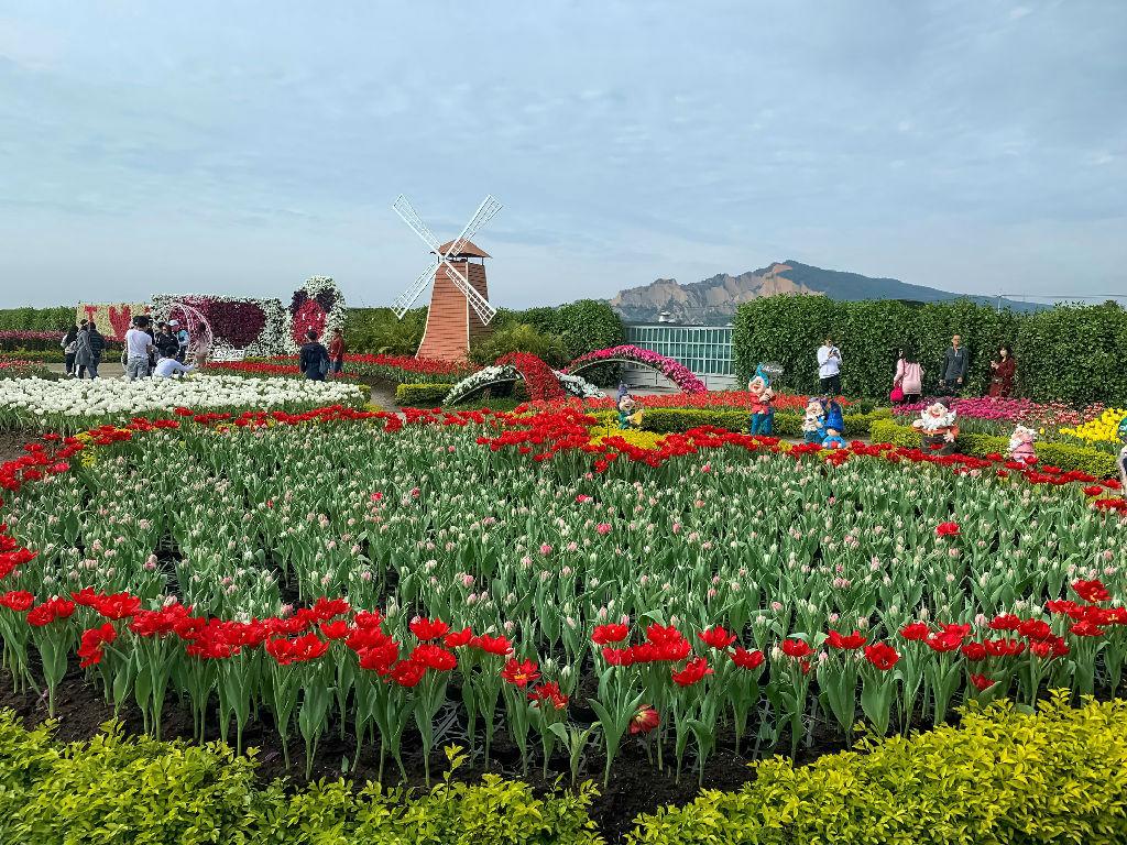 Zhongshe Flower Market Place (中社观光花市)