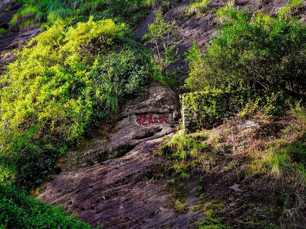 Great Red Robe Scenic Area 大红袍景区