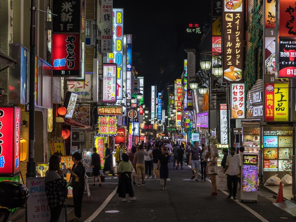 Shinjuku Shopping Street / 新宿