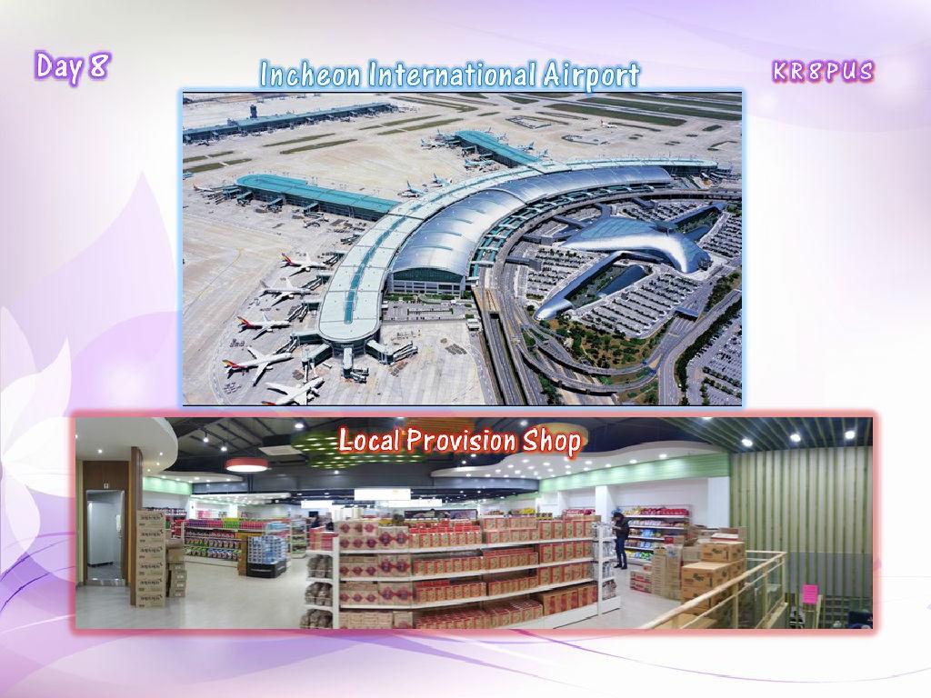 Provision Shop (韩国土产专买店)