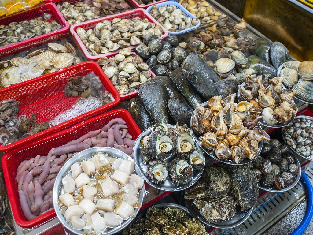 Jagalchi Seafood Market (札嘎其市场)
