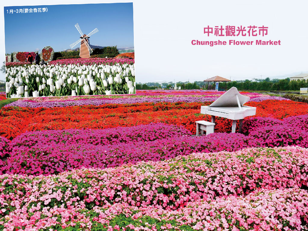 Zhongshe Flower Marketplace (中社观光花市)