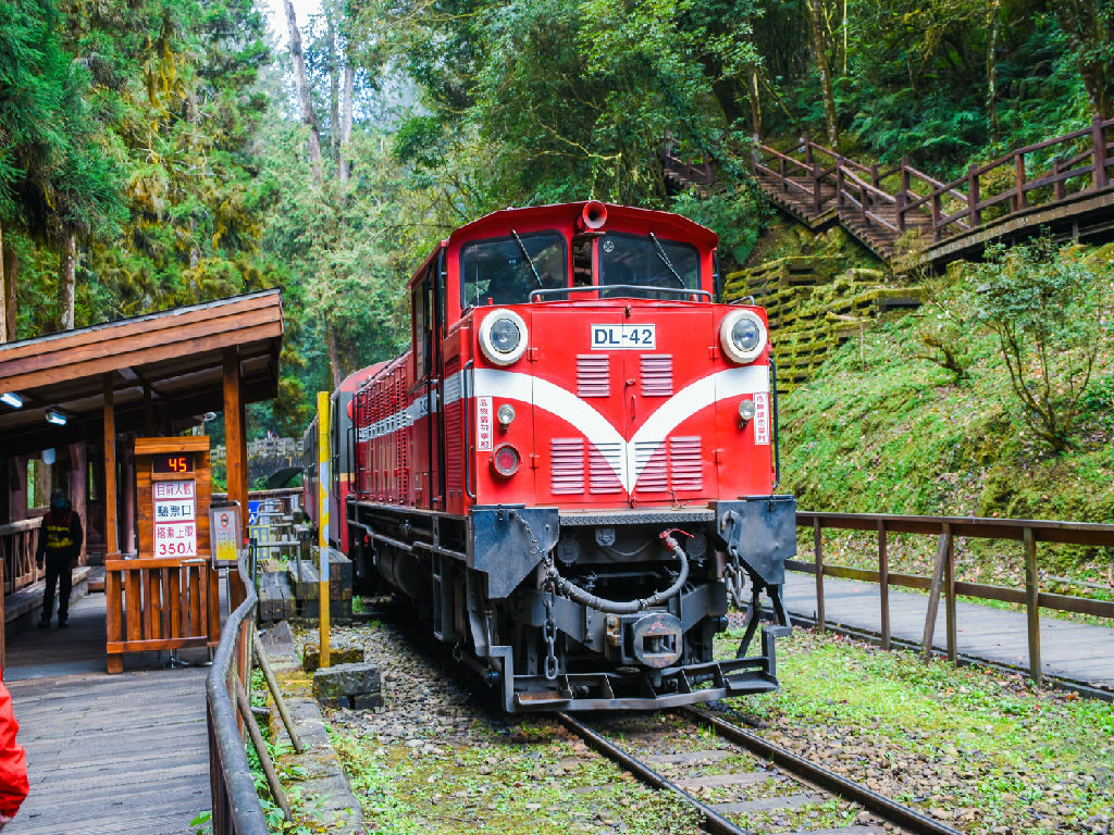 Alishan Forest Train (阿里山 - 火车)