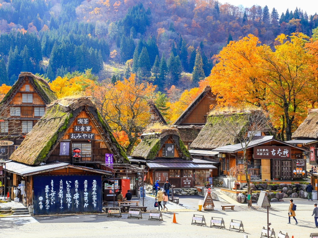 Shirakawago Autumn / 白川鄉合掌村
