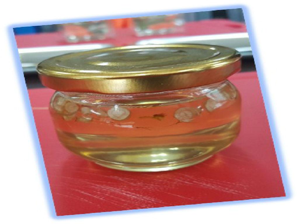 Honey Ginseng DIY (蜂蜜人参DIY)