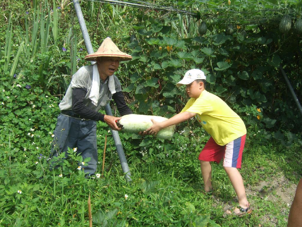 Toucheng Leisure Farm (头城农场 - 阿水伯拔冬瓜)