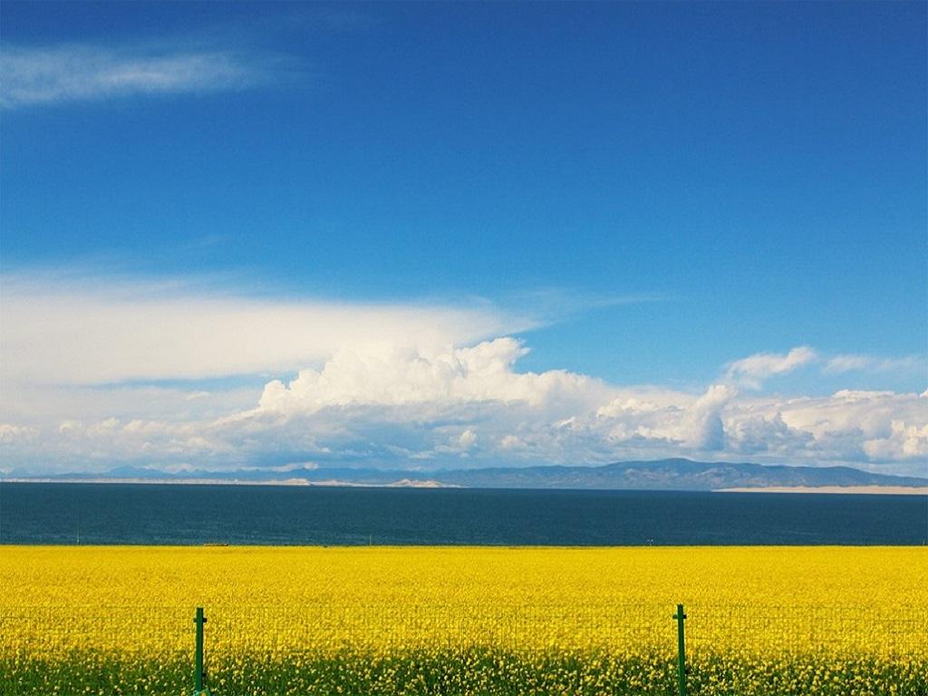 Qinghai Lake青海湖