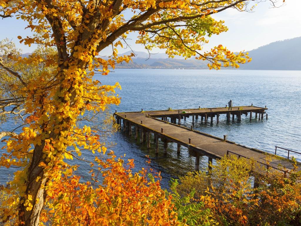 Lake Towada Japan / 十和田湖