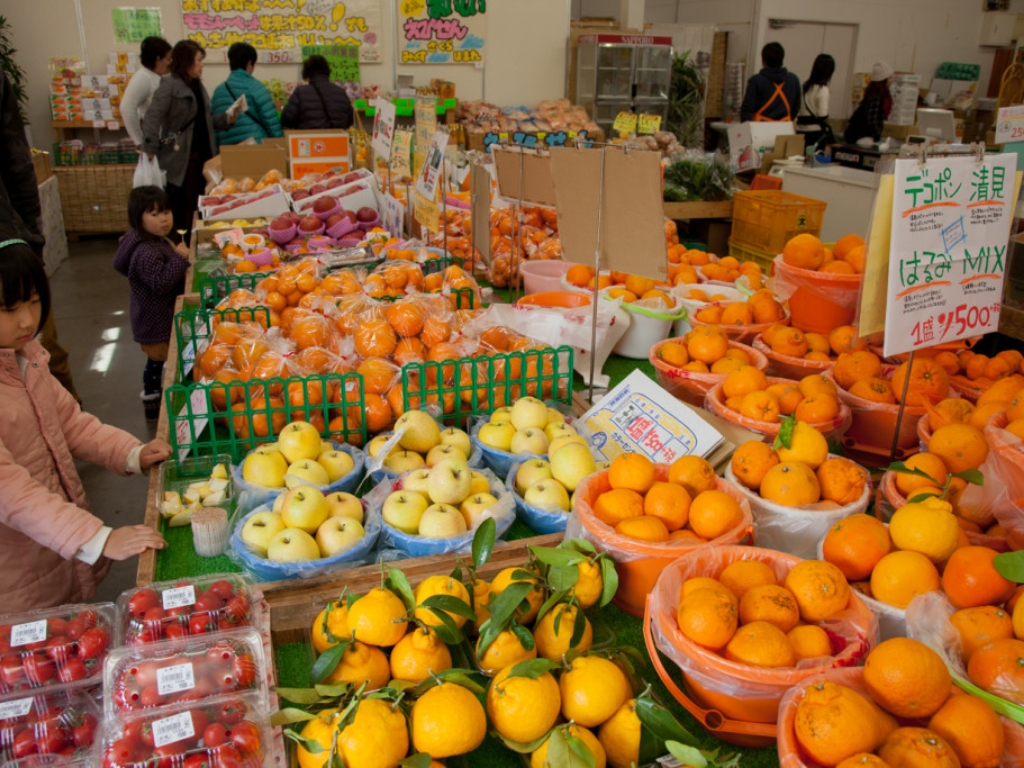 Kinokuni Fruits Village / 水果村