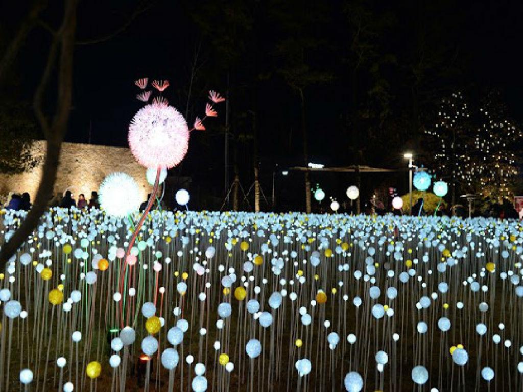 OOOZOOO Starlight Garden (星光庭院)