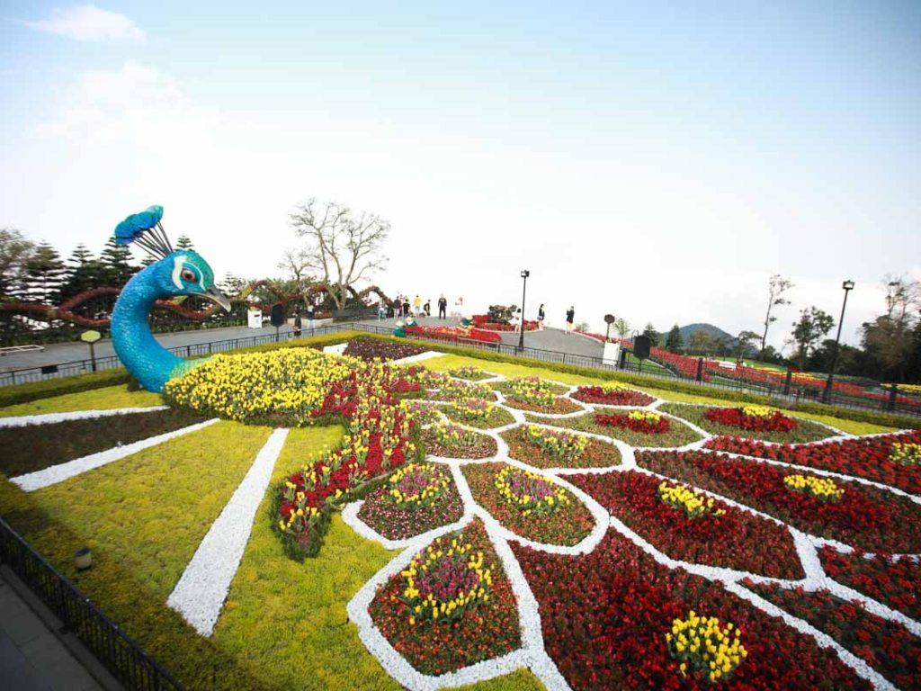 Ba Na Hills - Flower Garden.jpg