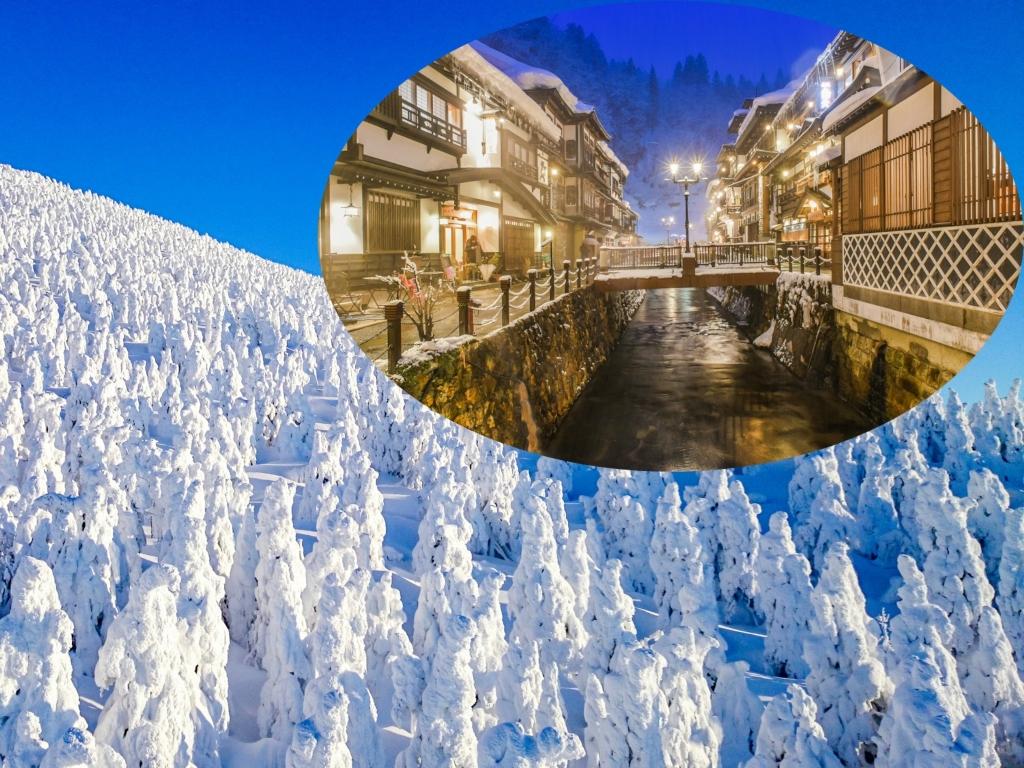8D6N WINTER SNOW MONSTER & NIIGATA